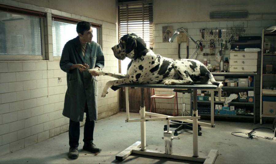 05 dogman